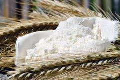 #66 小麦粉について