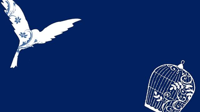 青い鳥~隠れた宝物は業務にあり~